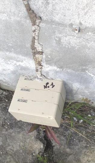 Traitement-anti-termite-Sentri-tech-2